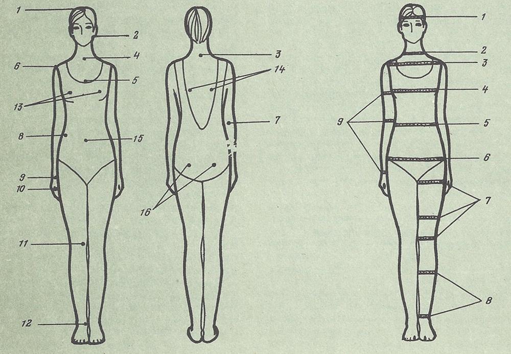 размеры пннисов в картинках каждого второго груди