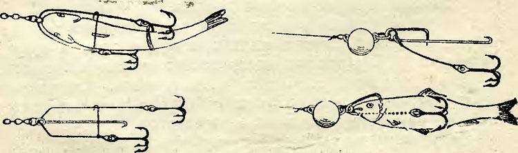 ловля щуки на оснастку из мертвой рыбы