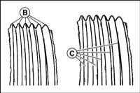 3.10 Sprawdzanie stanu napędowych prążkowane pasów BMW 3 (E46)